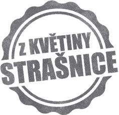 Online květinářství Květiny Strašnice Praha